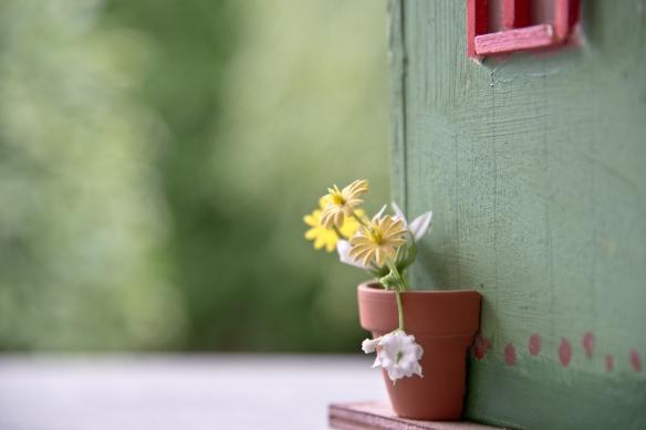 不忍放棄多年感情_flowers-502942