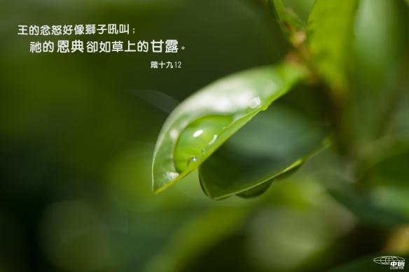 困難_恩典如甘露2