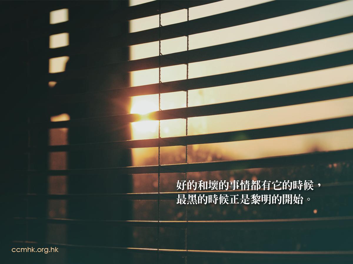ccmFB_CT684_20190507