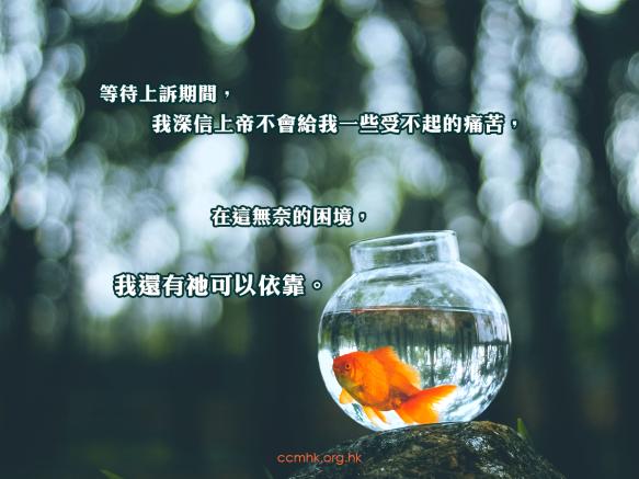 ccmFB_CT678_20200115